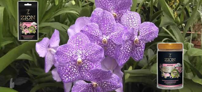 Ионитный субстрат для орхидей — Цион (Zion)