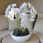 Белая орхидея в белой вазе