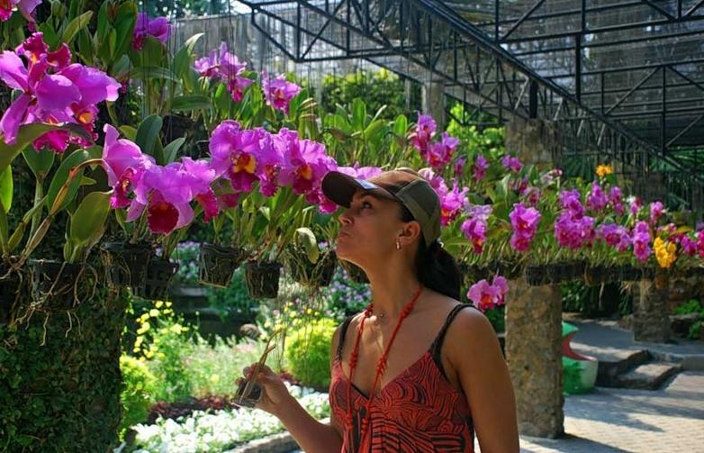 Сад орхидей в Паттайе фото туристов