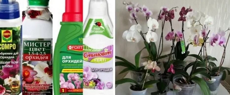 Комплексные удобрения для орхидей