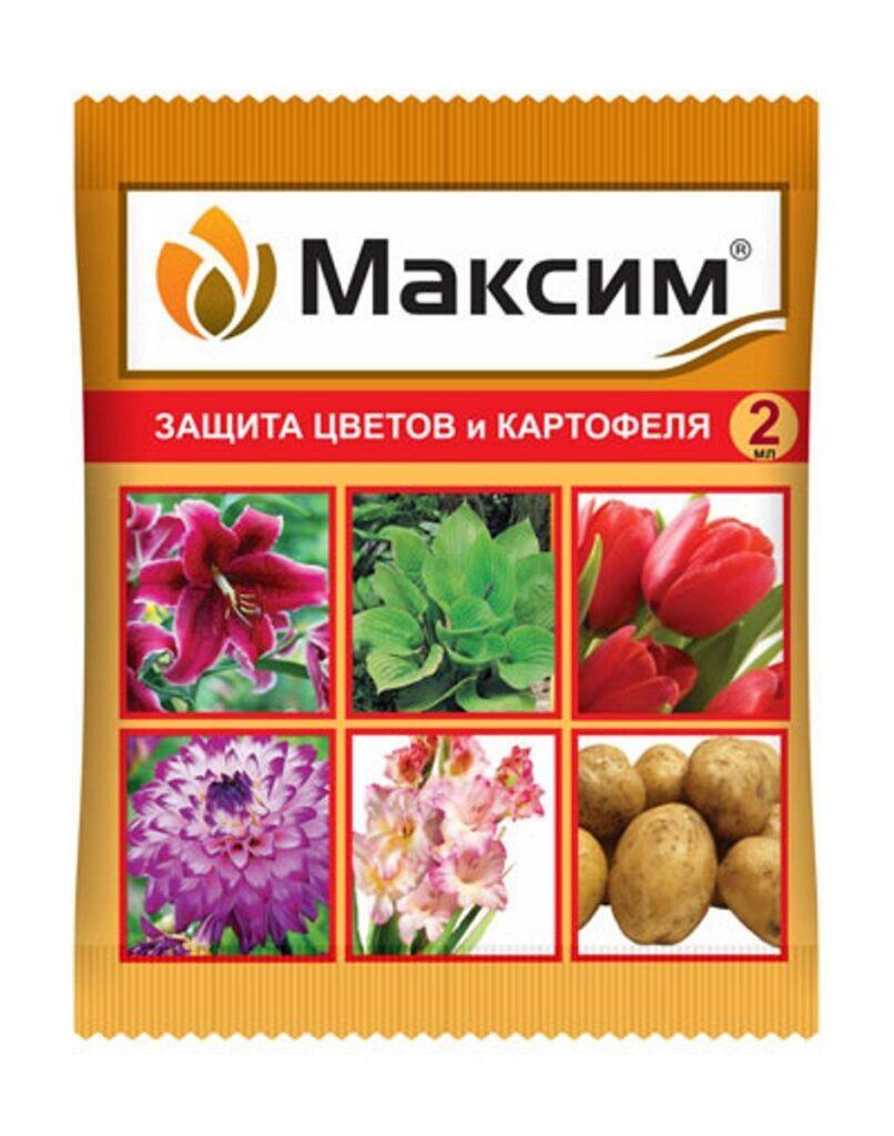 Максим1