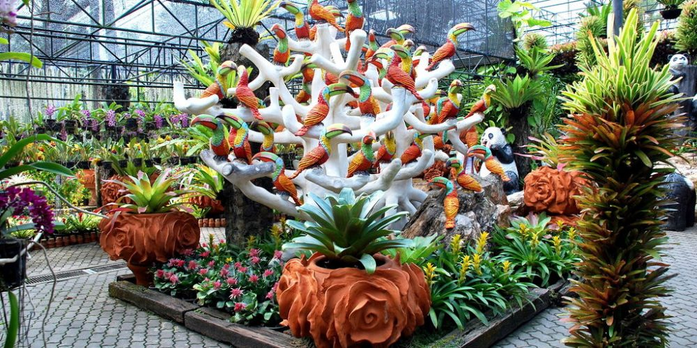 Ботанический сад в Паттайе