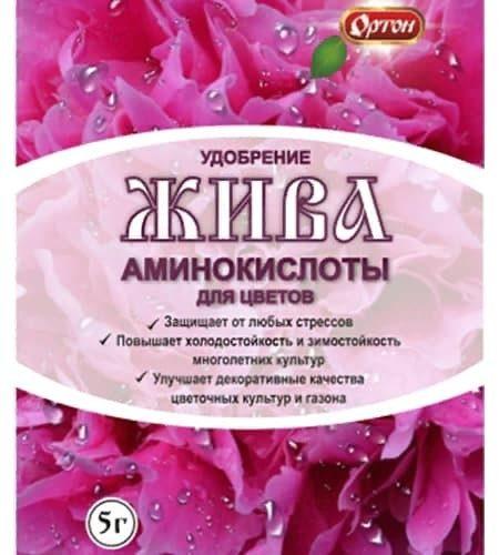 Жива1 розовая